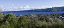 Ludwigshafen während der Baumblüte 160428-040