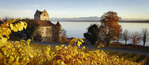 Burg Meersburg im herbstlichen Weinlaub 151108-017P