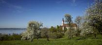 Klosterkirche Birnau im Frühling in der Baumblüte 180419-589