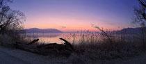 Bodman Sonnenaufgang im Ried 2 190216-008P