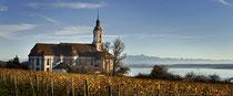 Klosterkirche Birnau im herbtslichen Weinlaub eingebettet 151108-015