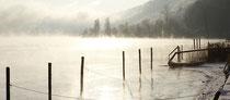 Eisig kalter Morgen in Bodman 091220-086P