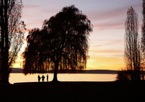 Sonnenuntergang bei Meersburg 151108-081