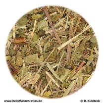 Gundelrebenkraut (Glechomae herba)