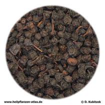 Getrocknete Heidelbeeren (Myrtilli frucuts siccus)