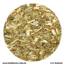 Steinkleekraut (Meliloti herba)
