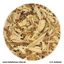 Brennnesselwurzel (Urticae radix)