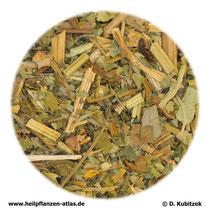 Schöllkraut (Chelidonii herba)