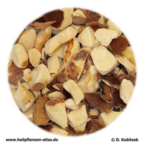 Rosskastaniensamen (Hippocastani semen)