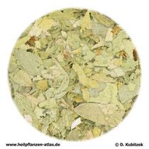 Sennesblätter (Sennae folium)