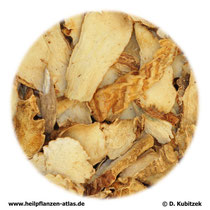 Anemarrhena-asphodeloides-Wurzelstock (Anemarrhenae asphodeloides Rhizoma). TCM-Name: Zhimu.