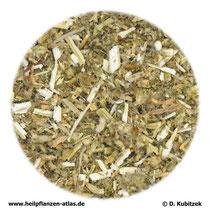 Andornkraut (Marrubii herba)