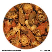 Rotwurzelsalbei-Wurzelstock (Salviae milthiorrhizae radix et rhizoma). TCM-Name: Danshen.