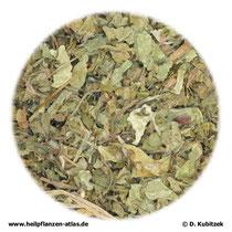 Asiatisches Wassernabelkraut (Centellae asiaticae herba)