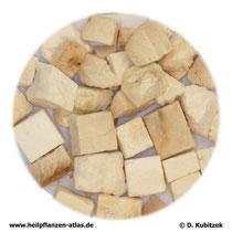 Poria-cocos-Fruchtkörper (Poria). TCM-Name: Fuling.