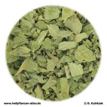 Frauenmantelkraut (Alchemillae herba)