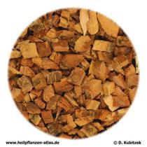 Eichenrinde (Quercus cortex)