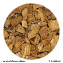Klettenwurzel (Arctii radix)