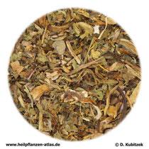 Löwenzahnkraut mit Wurzel (Taraxaci officinalis herba cum radice)