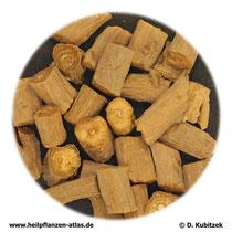 Achyranthes-bidentata-Wurzel (Achyranthis-bidentatae radix). TCM-Name: Niuxi.