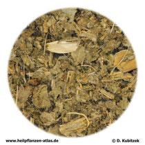 Artischockenblätter (Cynarae folium)