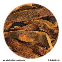 Drynariawurzelstock (Drynariae rhizoma). TCM-Name:  Gusuibu.