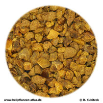 Corydalis rhizoma (Yanhusuo-Lerchenspornwurzelstock; TCM: Yanhusuo)