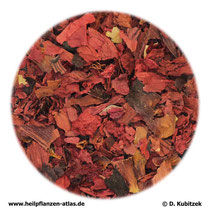Klatschmohnblüten (Papaveris rhoeados flos)