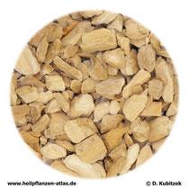 Kalmuswurzelstock (Calami rhizoma)