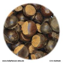 Guarana (Guaranae semen)
