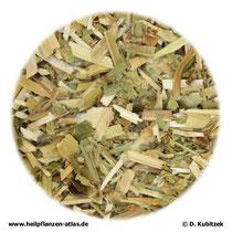 Buchweizenkraut (Fagopyri herba)