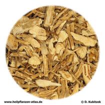 Maeusedornwurzelstock (Rusci rhizoma)