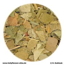 Eschenblätter (Fraxini folium)