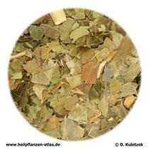 Efeublätter (Hederae folium)