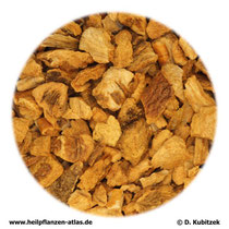 Enzianwurzel (Gentianae radix)