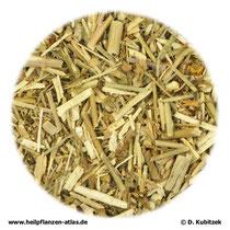 Weg-Raukenkraut (Sisymbrii officinalis herba)