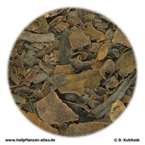 Tang (Fucus vel ascophyllum)