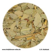 Eucalyptusblätter (Eucalypti folium)