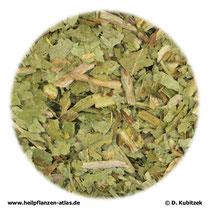 Löwenzahnblätter (Taraxaci folium)