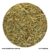 Schachtelhalmkraut (Equiseti herba)