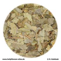 Boldoblätter (Boldi folium)
