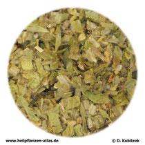 Berufskraut (Sideritis herba)