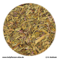 Erdrauchkraut (Fumariae herba)
