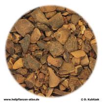 Kolasamen (Colae semen)