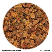 Tormentillwurzelstock (Tormentillae rhizoma)