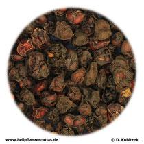 Schisandrafrüchte (Schisandrae chinensis fructus). TCM-Name: Wuweizi.