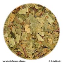 Birkenblätter (Betulae folium)