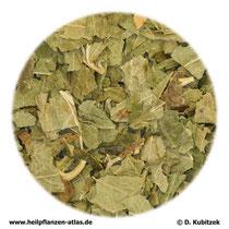 Schwarze-Johannisbeere-Blätter (Ribis nigri folium)
