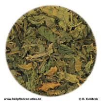 Brennnesselblätter (Urticae folium)