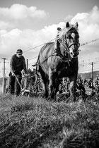 1er Prix photo noir et blanc